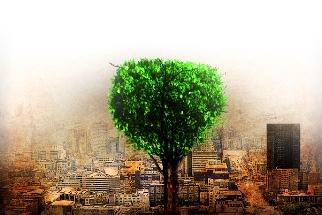 Câmpurile electrice negative din jurul nostru ne influenţează viaţa de zi cu zi! Ce-am putea face…