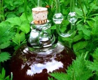 Vara nu puteti consuma ceva mai gustos, mai sanatos si mai racoros: berea de urzici! In plus, vindeca si reumatismul!