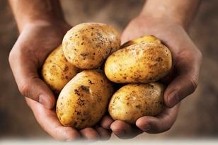 cartofi 70