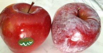 In supermarketuri se gasesc fructe cu ceara si pesticide! Pericol de a face cancer si alte boli grave…