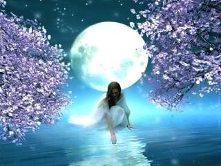 luna vise