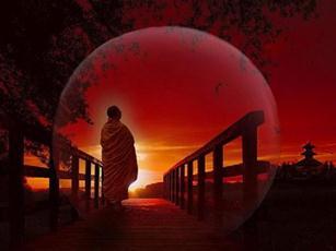 maestru zen