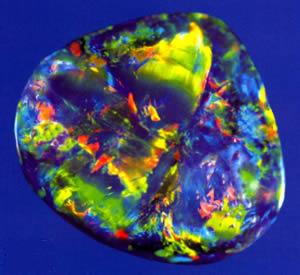 opal 20