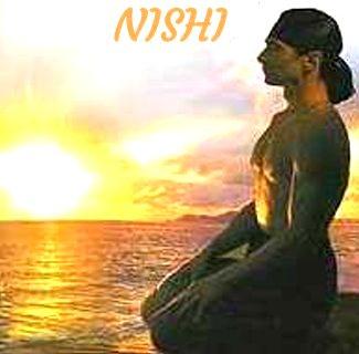 sistemul Nishi