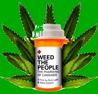 uleiul de marijuana