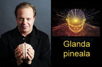 Un doctor ne vorbeste despre activarea glandei pineale, pentru a avea parte de experiente mistice, extrasenzoriale