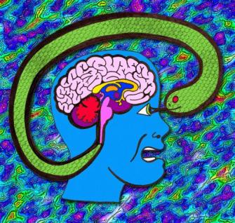 """Societatea actuala ne manipuleaza sa ne folosim """"mintea reptiliană"""", fara discernamant! Dar, putem trece de ea…"""
