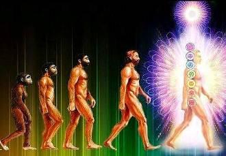 evolutie zeu