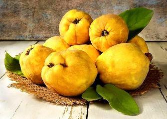 Gutuia: fructul care vindeca racelile si problemele digestive