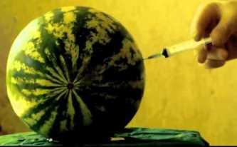 injectare pepene verde