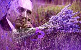 Levantica este planta mijlocitoare dintre ingeri si oameni - spunea celebrul profet Edgar Cayce