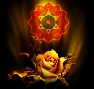 meditatia trandafirului