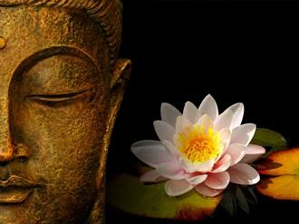 suferinta budism