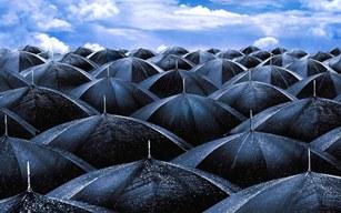 umbrela 71